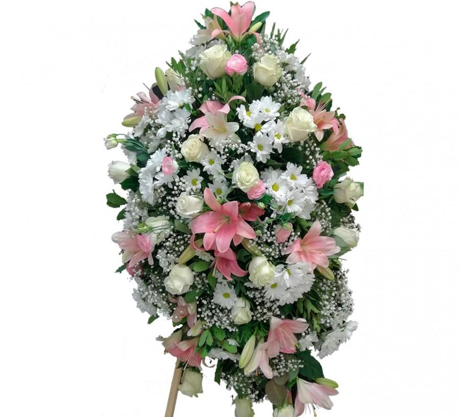 Palma blanca y rosa